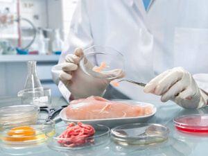 Systemy zapewnienia bezpieczeństwa żywności